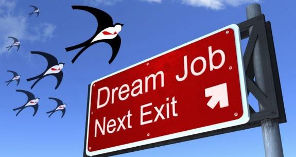 Platforma cu joburi locale pentru cei cu studii internaţionale