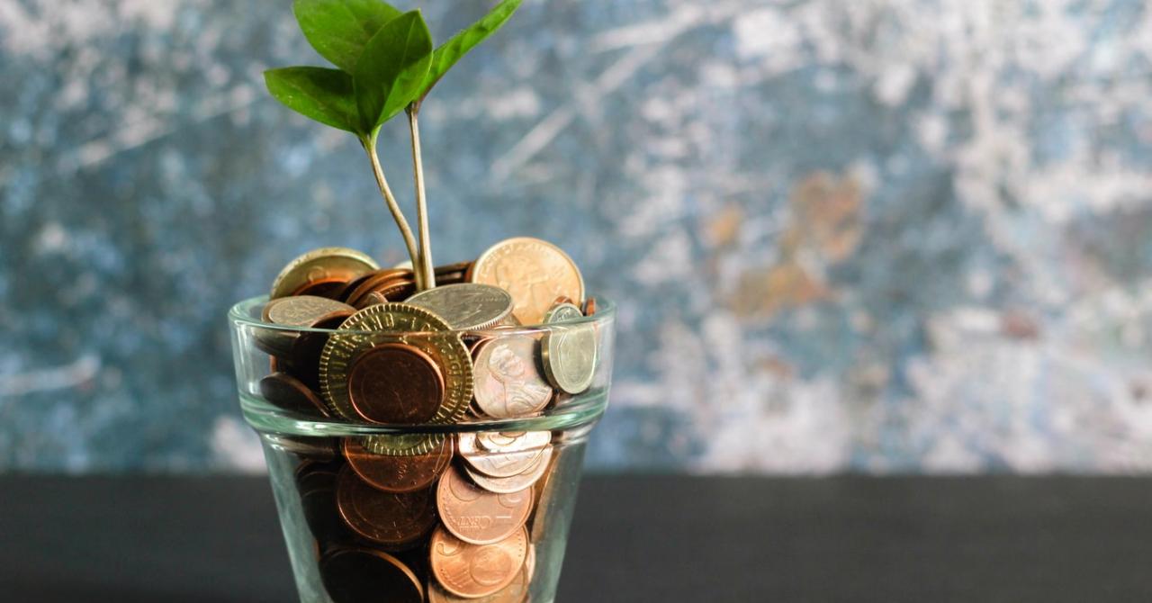Finanțare prin bursa de valori versus private equity: explicații pe larg II