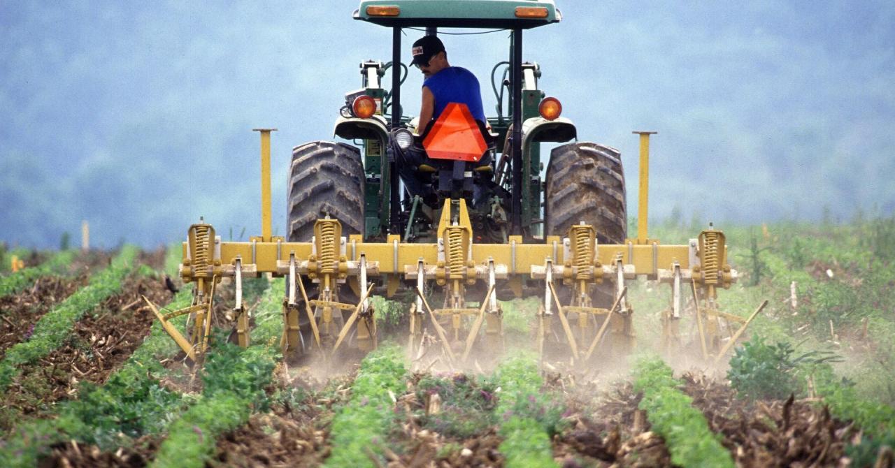 Holde Agri, listată pe bursă, investiții de 12 mil. de euro în modernizare