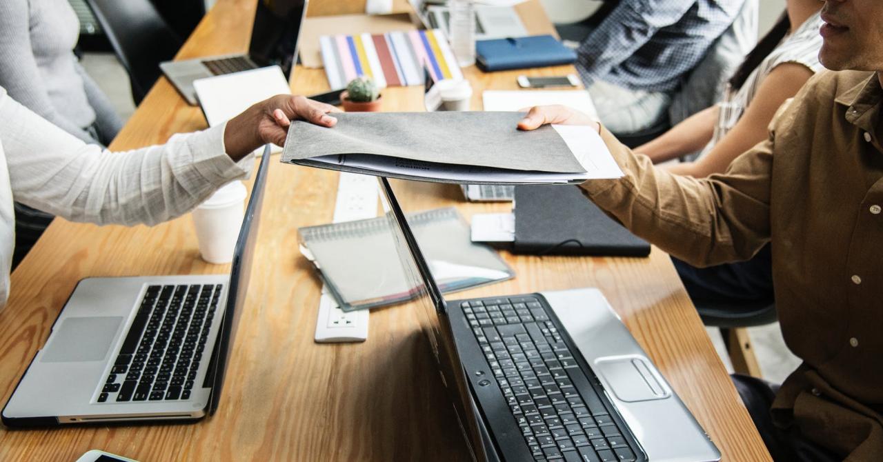 Studiu BestJobs: contabilii, inginerii sau IT-știi își caută de muncă