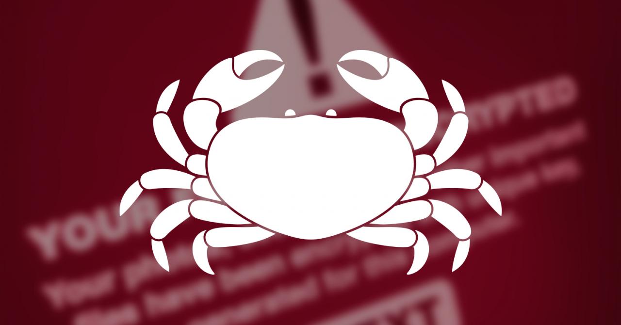 Programul gratuit care-ți deblochează datele sechestrate de hackeri