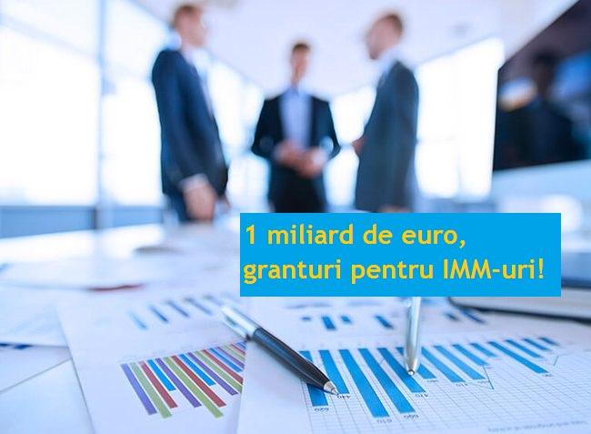 Granturi pentru IMM-uri de 1 mld. euro: document publicat în Monitorul Oficial