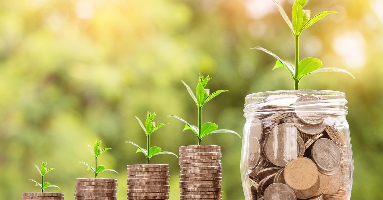 Ce sunt dividendele și când le dai?