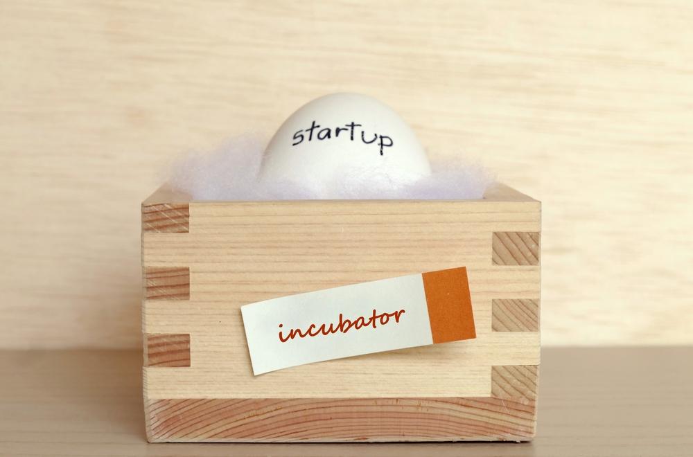 Incubatorul Ilfov Business Hub, înscrieri deschise. Ce caută organizatorii