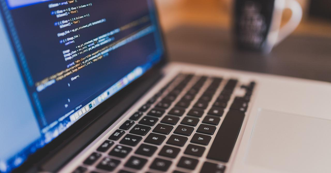 Cursuri online de programare sub 50 de lei, pentru un job bine plătit