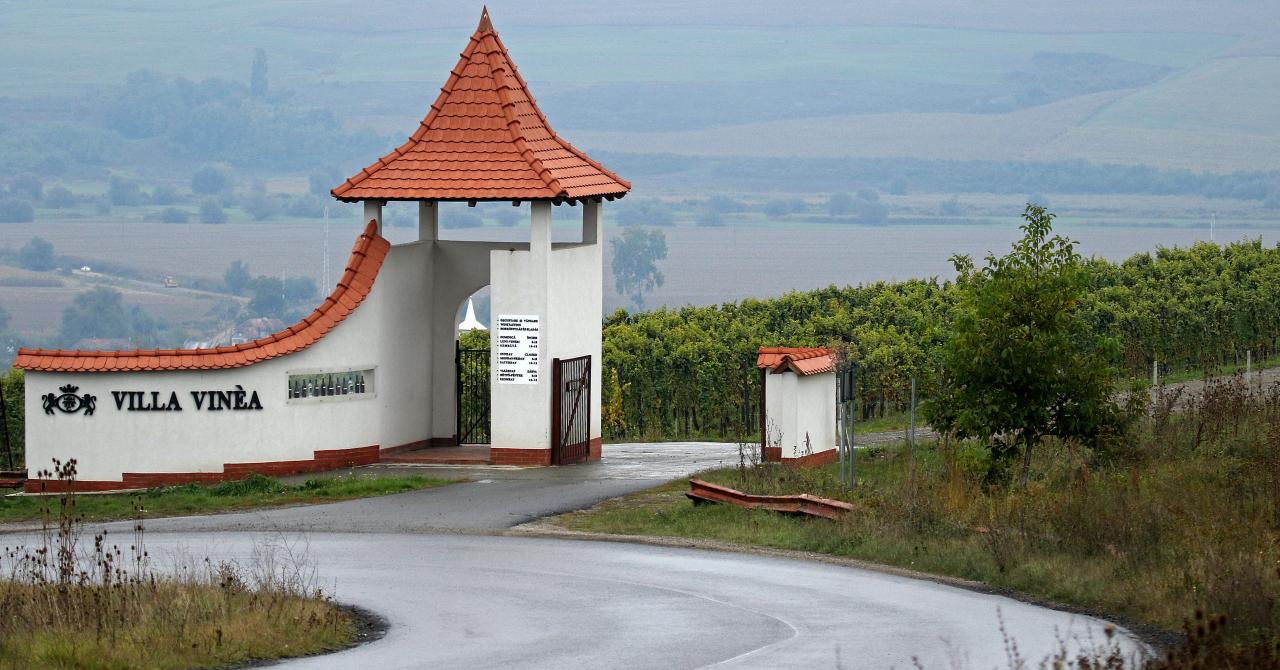 Crama Săptămânii: Villa Vinea, din nordul Italiei pe Valea Târnavelor