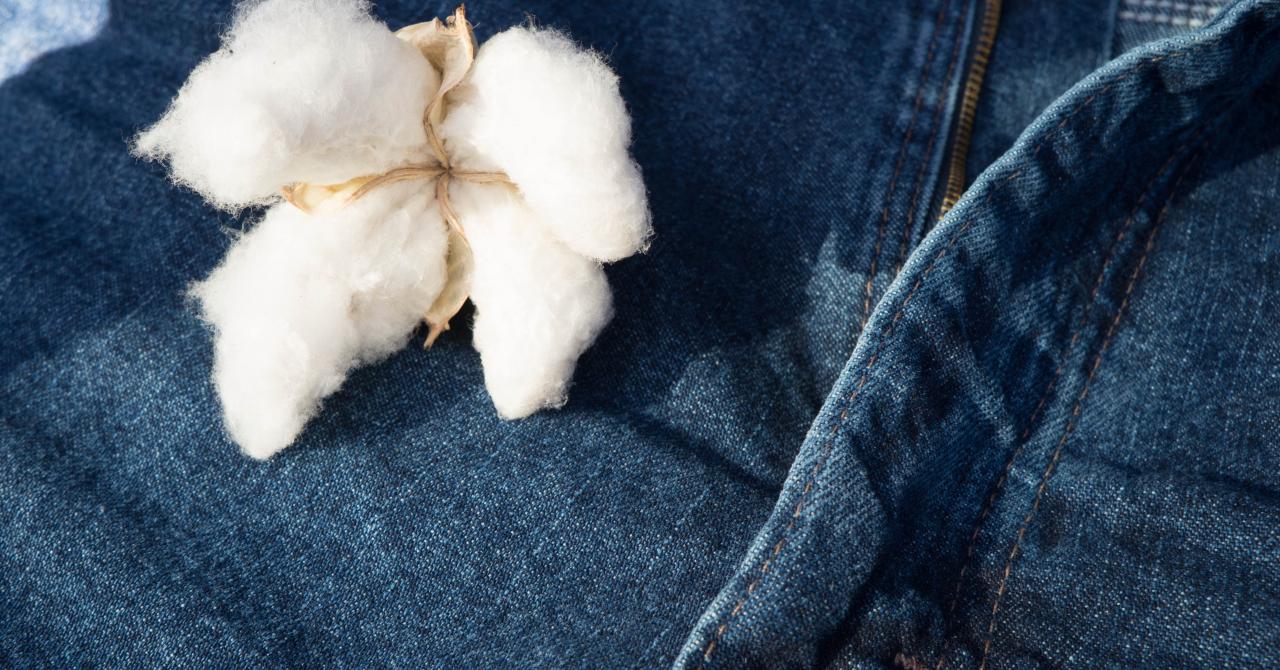 Motorul de căutare pentru haine din materiale sustenabile