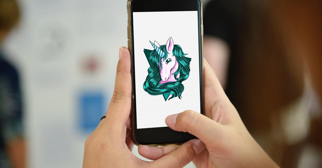 Cum au reușit unicornii - lecții pentru antreprenori
