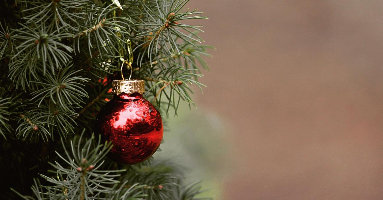Cumpărături de Crăciun: cum va afecta pandemia consumatorii