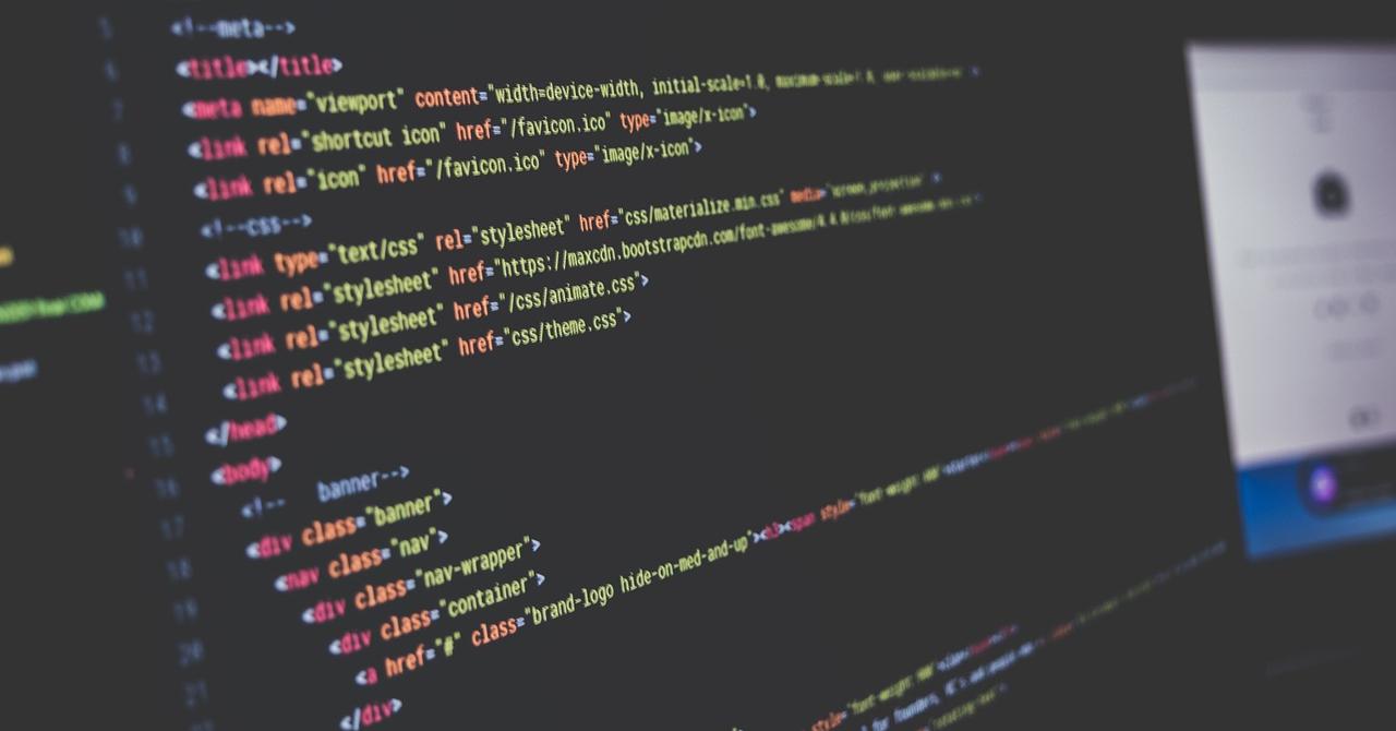 Cursuri de programare: unicornul Revolut te învață să scrii cod