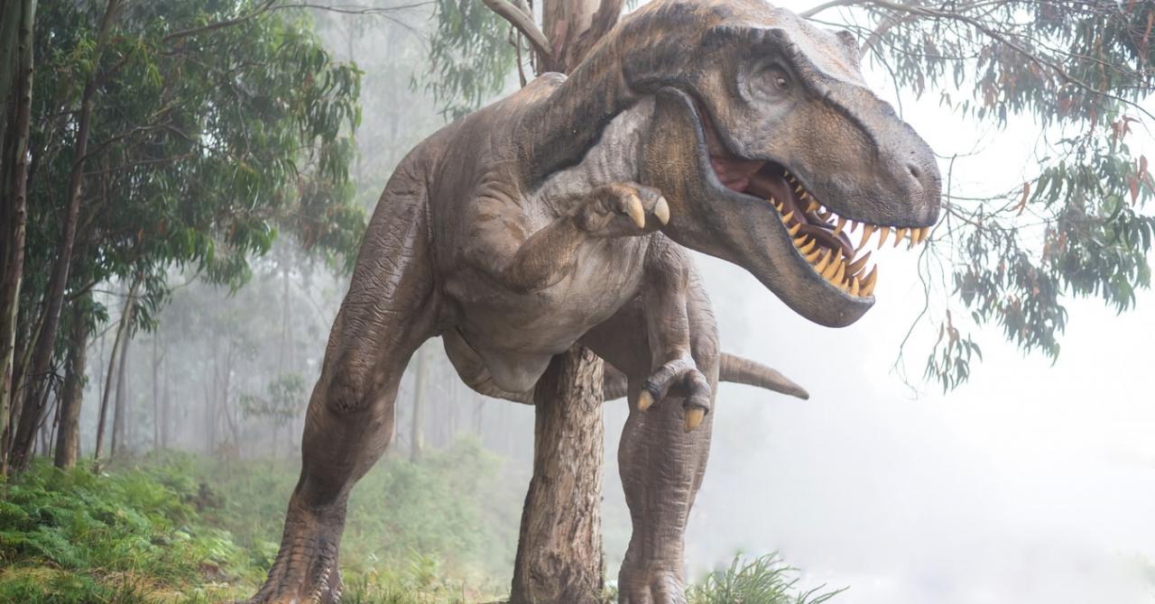 Dinozauri în realitate augmentată direct din Google Search