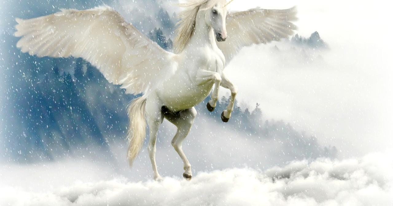 Cum devii unicorn – studiu de caz UiPath
