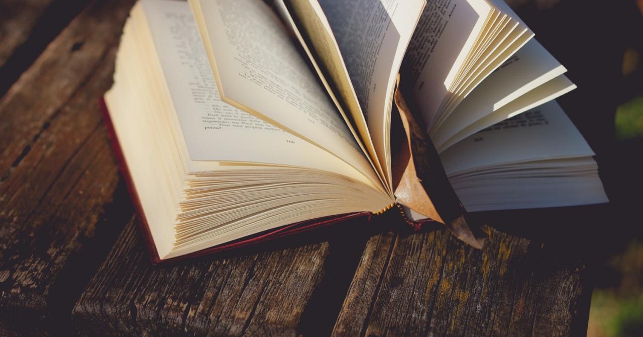 Cărți de business:celemai vândute volume în 2020 pe elefant.ro