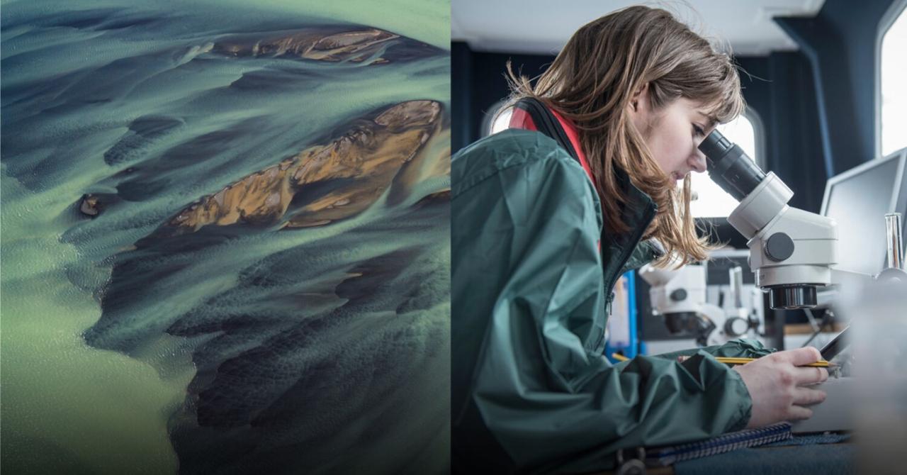 25.000 de euro pentru studenți. Competiția Ericsson Innovation Awards 2020