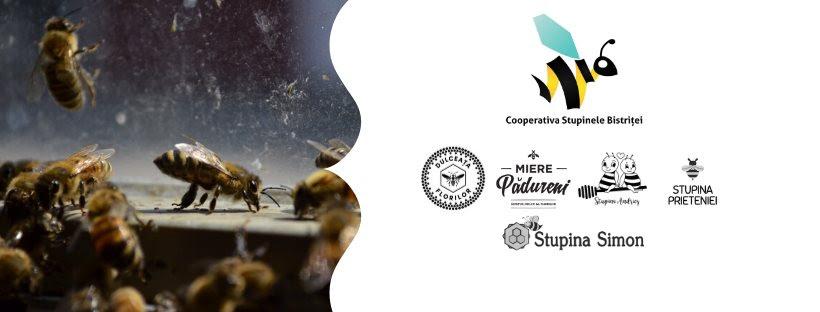 BeeLog, soluția românească care digitalizează gestionarea stupinelor