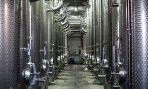 """Cramă de 6,5 milioane de euro, condusă de o tânără de 30 de ani. Livia Gîrboiu: """"Vrem să educăm lumea să consume un vin bun"""""""