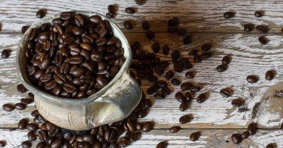Narcoffee Roasters, 15 cafenele în România
