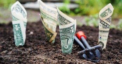 Cât valorează cele mai mari startupuri susținute de VC-uri