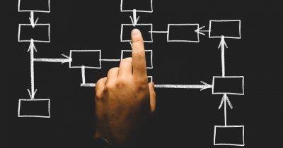 SRL, PFA sau ONG: care sunt particularitățile de înființare