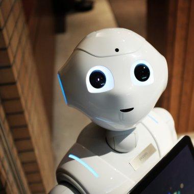 O româncă salvează planeta, robotică pentru copii - Business Report 1