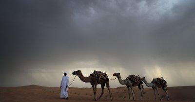 Cum arată o remaniere guvernamentală în Emirate?