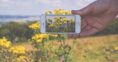 """Aplicația smartphone care speră să fie """"Shazam pentru natură"""""""