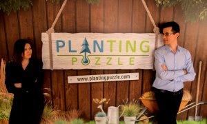 Grădinăclick: Planting Puzzle, magazinul de unde iei grădini întregi