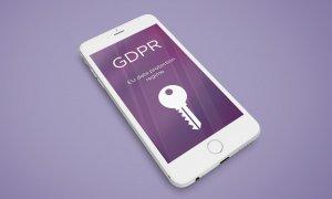 Regulamentul GDPR: s-a publicat procedura de control a ANSPDCP