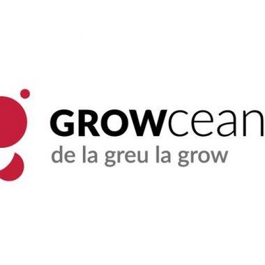 Growceanu, platforma de business angels din Timișoara