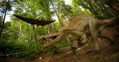 Dino Parc Râșnov: dinozaurii au strâns circa 500.000 euro în 3 luni