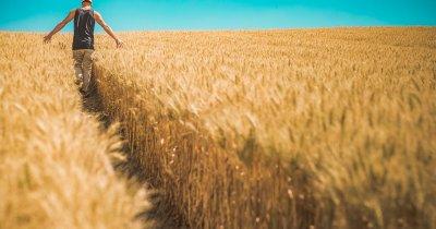 Finanțare europeană pentru micii fermieri. Eligibilitate și documente