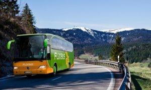 FlixBus, încă o rundă de finanțare pentru extindere globală