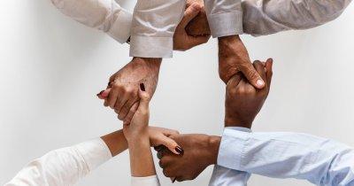 Ce este organigrama unei companii?