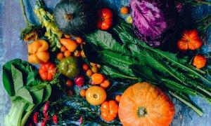 Piataprahova.ro, site-ul unde-ți poți face piața de la producători locali