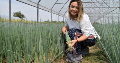 Fresh Veg: 1,5 milioane de legături de verdeață vândute. Așteptări pentru Paști