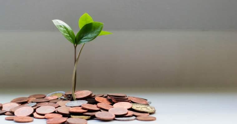 strategii comerciale pentru sume mici)