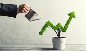 IMM Invest a început. Descarcă ghidul și declarația de încadrare ca IMM
