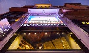 Franciza TED'S COFFEE: investiții în noi cafenele
