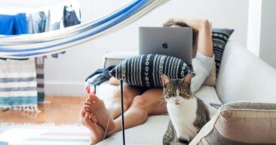 Soluția gratuită de la SAP ca să afli ce vor angajații tăi când muncesc de acasă