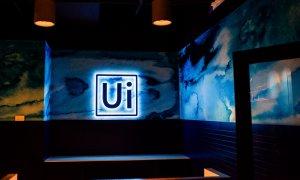 Strategia de dezvoltare a UiPath după investiția care i-a făcut decacorn