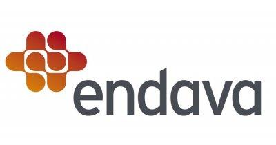 Endava urcă în topul producătorilor de software din România