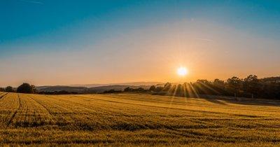"""Învingătorii """"secetei biblice"""": cum crește Holde Agri în plină pandemie"""