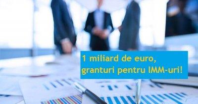 Granturi pentru IMM-uri de 1 mld. €: ghidul solicitantului, în dezbatere publică