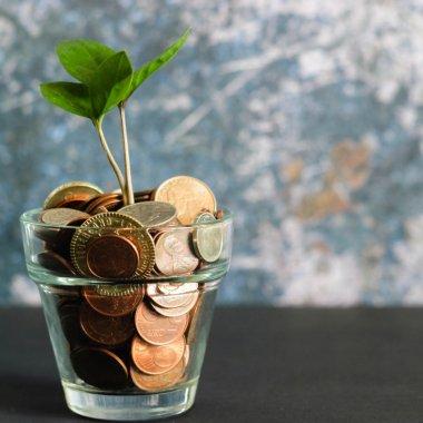 Garanti ia 7 mil. euro din Europa pentru a finanța antreprenorii români
