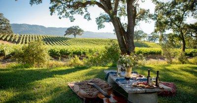 Vinurile săptămânii: călătoria continuă, regiuni viticole celebre din California