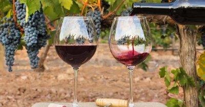 Cum alegi vinul potrivit pe care să-l faci cadou