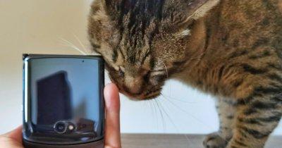 Review Motorola razr 5G: Smartphone pliabil aproape cu totul nou