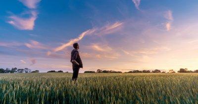 Cum poate ajuta tehnologia la reducerea emisiilor globale de CO2