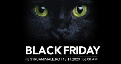 Black Friday 2020 și pentru petshop-uri. Așteptările PentruAnimale.ro