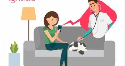 Românii de la Medic Chat lansează o platformă de telemedicină veterinară